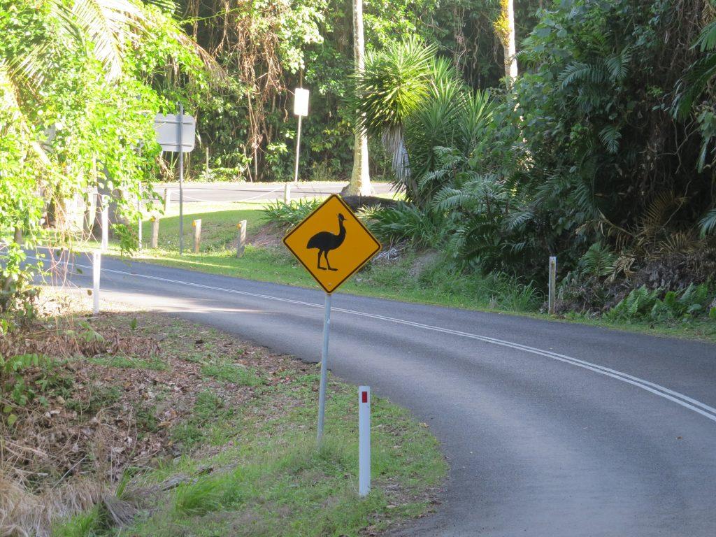 ヒクイドリ注意の道路標識