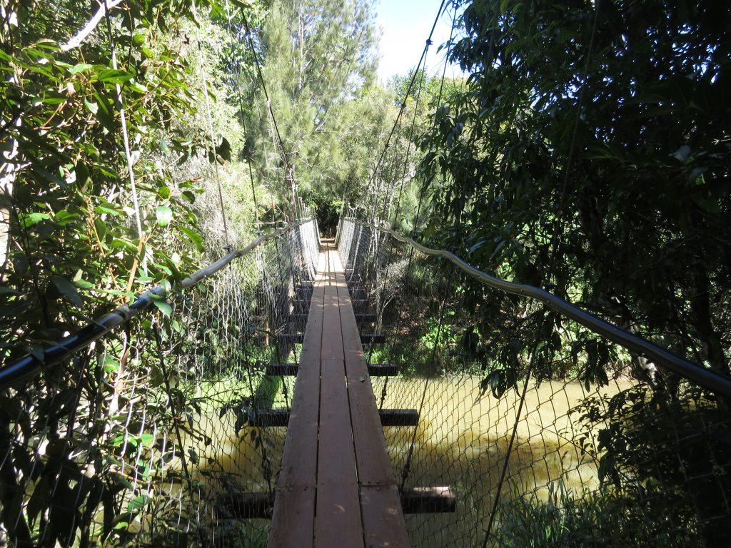 ピーターソンクリークのつり橋
