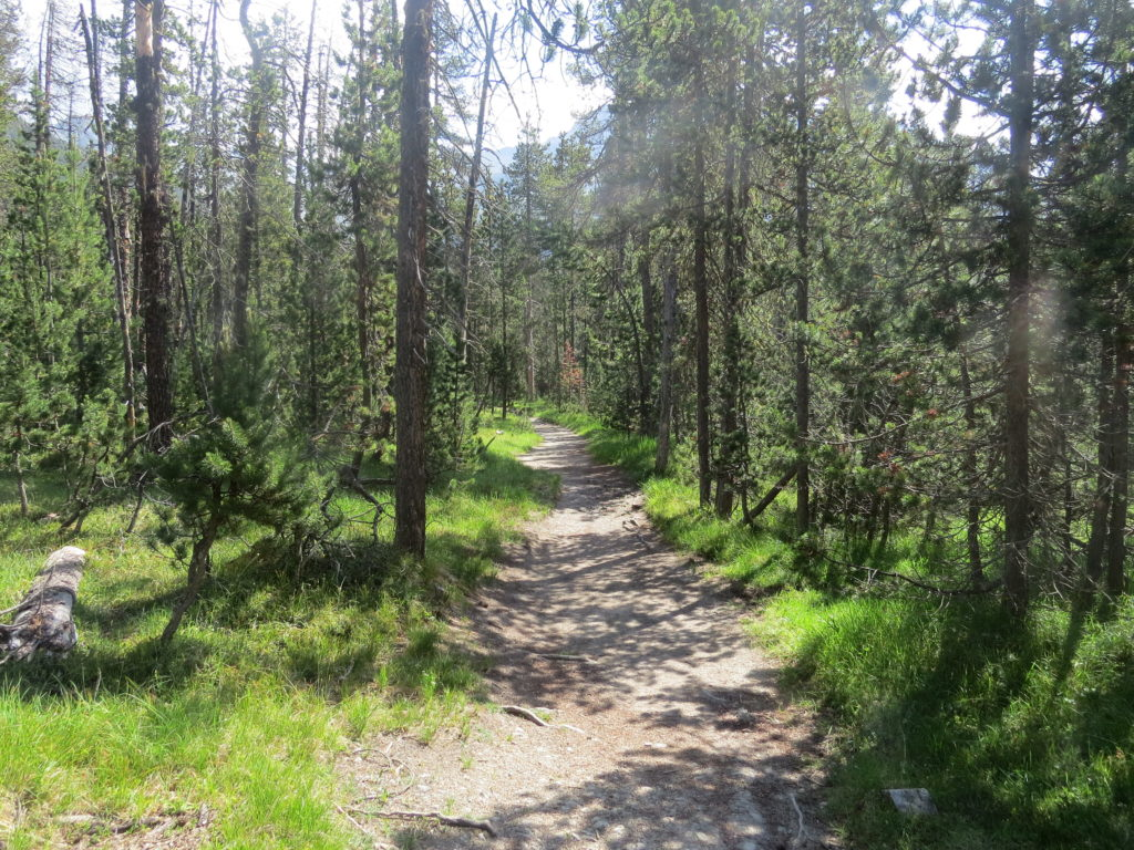 スイス国立公園ルート17