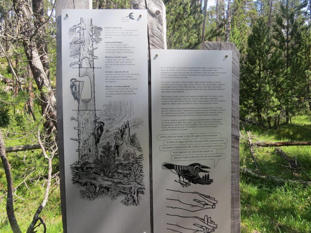 スイス国立公園ルート17情報パネル