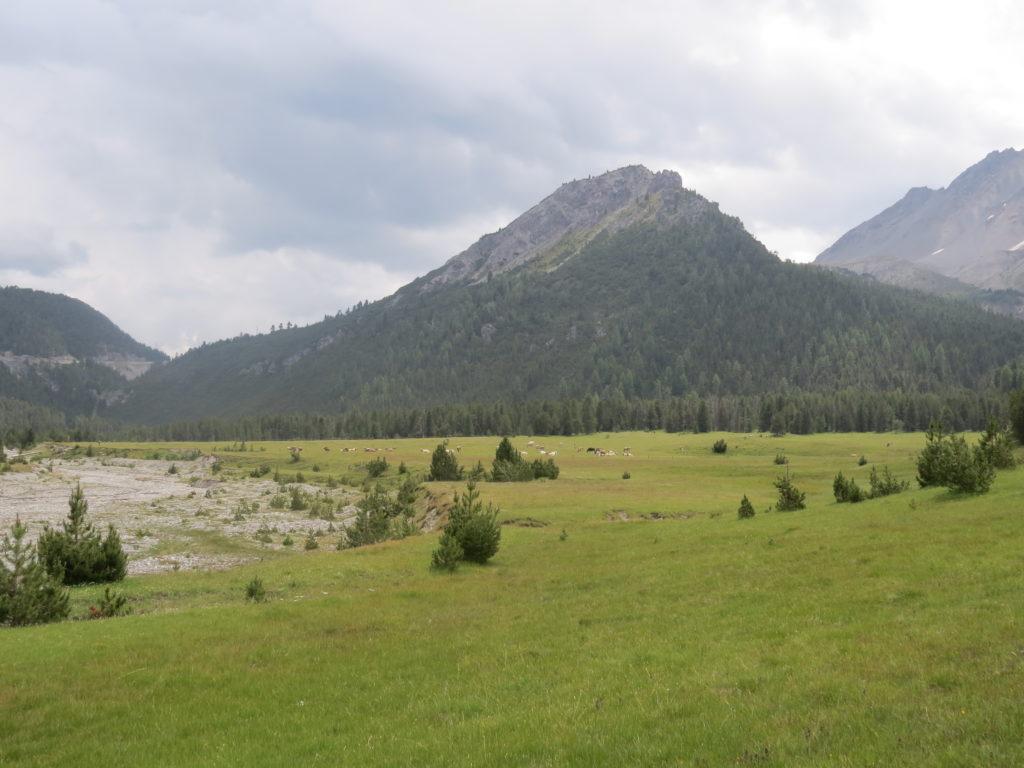 スイス国立公園ルート15入口付近